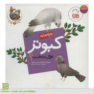 کتاب چرا خدا به کبوتر نوک داده است؟