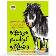 کتاب من بیچاره کره اسبم و هیچ کاره از نشر افق
